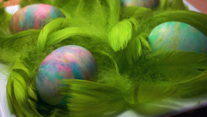 Hun lagde æg ned i en bakke fyldt med barberskum og maling. Resultatet? Imponere