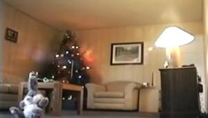 De satte et kamera midt i stuen. Indenfor et minut, optog de noget skrækkeligt