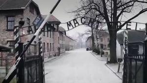 De filmede hele området omkring Auschwitz fra en drone. Det man ser, kan ikke u