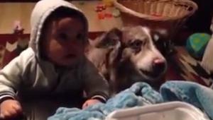Hun ville gerne have sin søn til at sige MAMA, men det som hunden lavede, overra