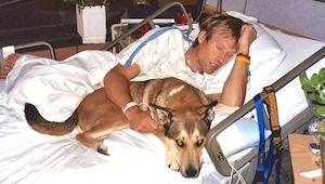 Lægerne gav hunden besked på at forlade sin herres stue på hospitalet. Se hunden