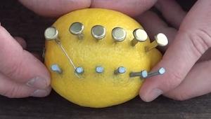 Her er et spændende trick som kan udføres med en citron! WOW!