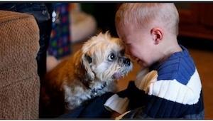 Synes du ikke at børn bør have dyr? Så se på de her billeder!