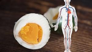Hvad sker der, hvis du spiser æg hver dag? Du vil undre dig over, hvad det gør v