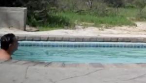 Han fik lyst til at køle af i svømmebassinet. Det, som kom ud fra buskene og sl