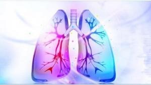 Se disse 7 produkter, som hjælper med at få nikotinen ud af kroppen. Spis sundt