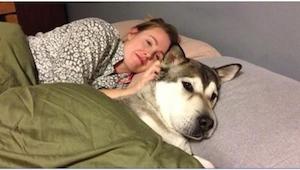 Giver du ikke din hund lov til at ligge i sengen med dig? Måske vil du overveje