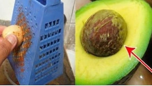Efter at have læst denne artikel smider jeg aldrig mere stenen fra avocadoen væk