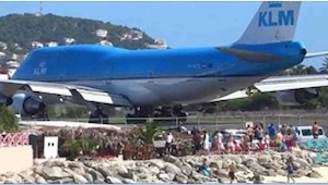 Fly er fly, men se her, hvad der sker med de mennesker, som befinder sig på stra