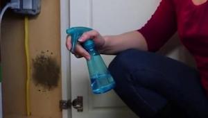 Dette middel er perfekt til hussvamp, og det er noget, vi alle sammen har derhje