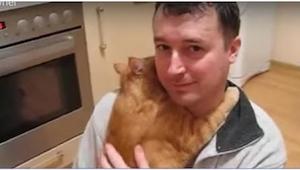 Det, som denne kat foretog sig, går direkte imod alle de myter, der eksisterer o