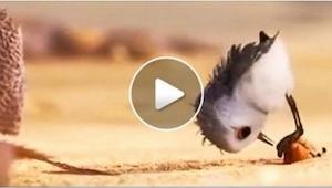 Denne nye animationsfilm fra Pixar er absolut smuk og charmerende, men den har o