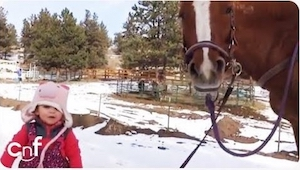 Denne 3-årige pige og hesten er bedste venner. Se hvordan de to snakker sammen!