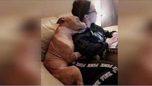 Hunden kom fra dyreinternatet og har levet sammen med hende i 2 uger, og han kan