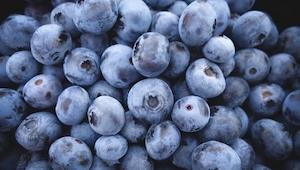 Guide til at dyrke blåbær i haven eller altanen. Lækkert!