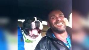 Denne hund gør sin ejer til skamme med sit talent for at optræde til kendte sang