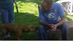 Denne hund sniffede nervøst til en mand han ikke kunne genkende. Efter et par s