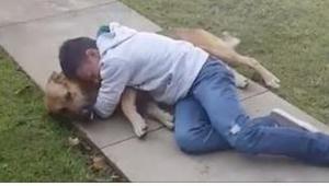 En 11 årig drengs hund forsvandt i 8 måneder. Han reaktion da hunden kom tilbage