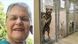Den ældre dame forhørte sig på dyreinternatet om en hund, som der ikke var nogen