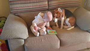 Forældrene besluttede sig for at optage, hvordan deres datter legede med hunden.