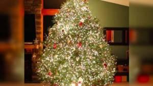 Et så usædvanligt juletræ har vi ikke set før!
