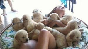 Dårligt humør? Når du har set disse 15 billeder, vil du være glad og opstemt!