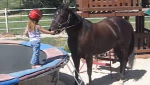 Den treårige pige ville ride på en hest, hvad hendes mor optog er fantastisk!