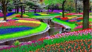 Se 15 billeder, der er enhver gartners drøm...