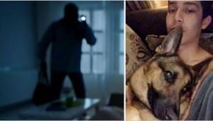 Teenageren gemte sig i skabet, da han hørte lyden af indbrudstyve i hjemmet. Der