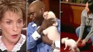 Den kvindelige dommer tillod den stjålne hund at løbe rundt i retten, for at den
