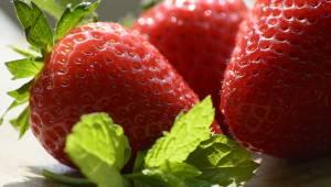 Nu kan du glæde dig over friske jordbær langt længere, takket være dette enkle t