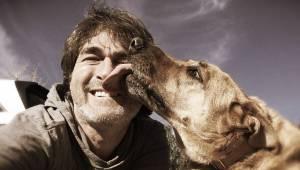 Derfor bør du ALDRIG lade din hund slikke dig i ansigtet.