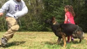 En truende overfaldsmand løber hen til en 5-årig pige. Men se blot den veltræned