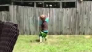 Barnet og naboens hund er adskilt af et rækværk, men de leger alligevel sammen h