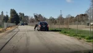 Den fortvivlede hund løber desperat efter sit menneskes bil, efter at den er ble