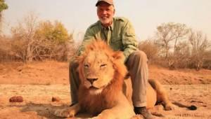 Trofæjægeren skyder mod en sovende løve, hvorefter han fejrer nedskydningen og n