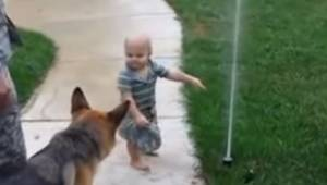 Den lille dreng forklarer hunden, hvordan en vandsprøjte virker. Schæferhundens