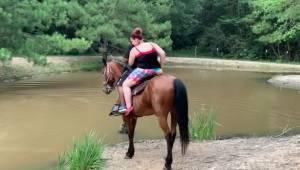 Hesten fik nok af at gå rundt med overvægtige turister. Se her, hvad kameraet op