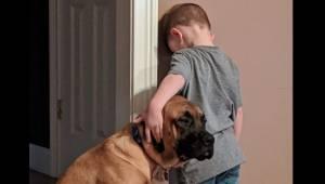Venner på godt og ondt. En loyal hund holder en dreng ved selskab, mens han som
