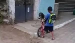 Drengen gik hen i butikken sammen med sin hund; se opmærksomt, for det er netop